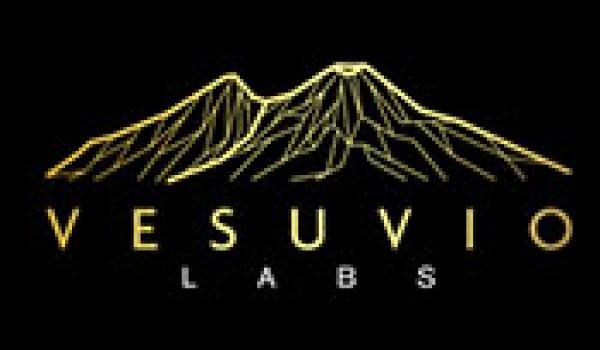 Job Vacancy for Vesuvio Labs